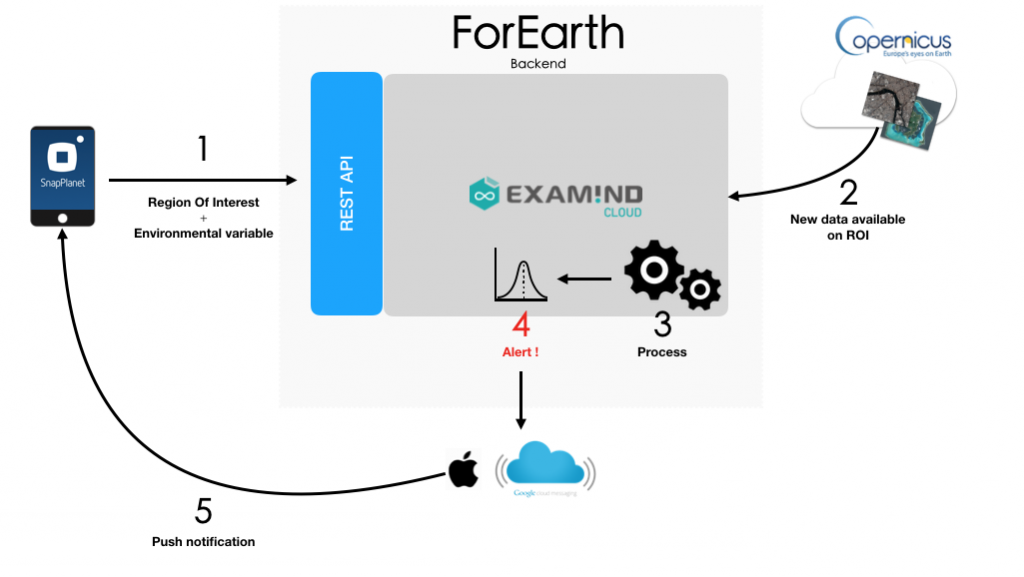 ForEarth architecture2